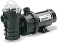 Pentair Sand Dollar Filter Dynamo Pump